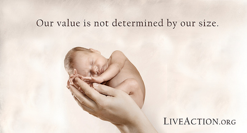 Pro Life Quotes pro life quotes 3 | Church of St. Anthony of Padua Pro Life Quotes